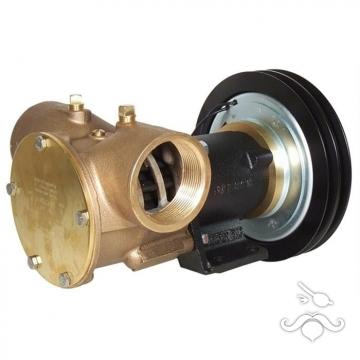 Jabsco Manyetik Kasnaklı Genel Maksat Pompası / 2' Bağlantı - 24V